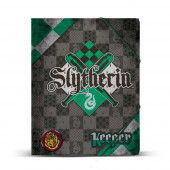 Folder  Quidditch Slytherin